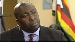 Saviour Kasukuwere, Zimbabwean Politician,