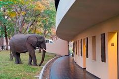 Hwange safari lodge.jpeg