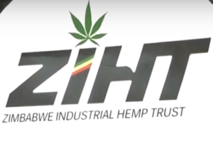 ZIHT logo.png